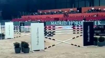 The video of the six bar…  #Neptune  #lucamariamoneta  #ethology  Madrid Horse…