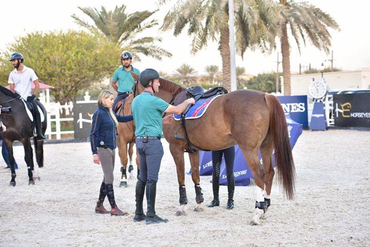 Luca Moneta Horsemanship shared Horseyes – Horses & Riders Management's photo.